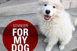 Sovnger - For My Dog EP