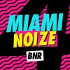 Miami Noize 4