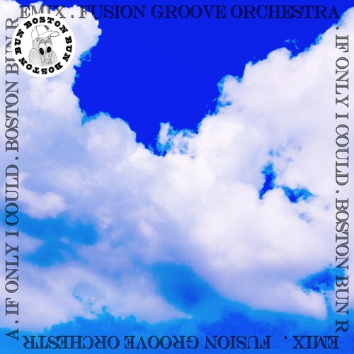 Fusion Groove Orchestra - If Only I Could (Boston Bun Remix)